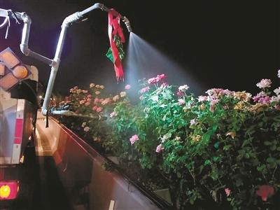 杭州市有关部门推出近几天来最强的抗旱绿色防护模式